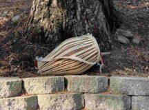 Drum outdoors beside tree