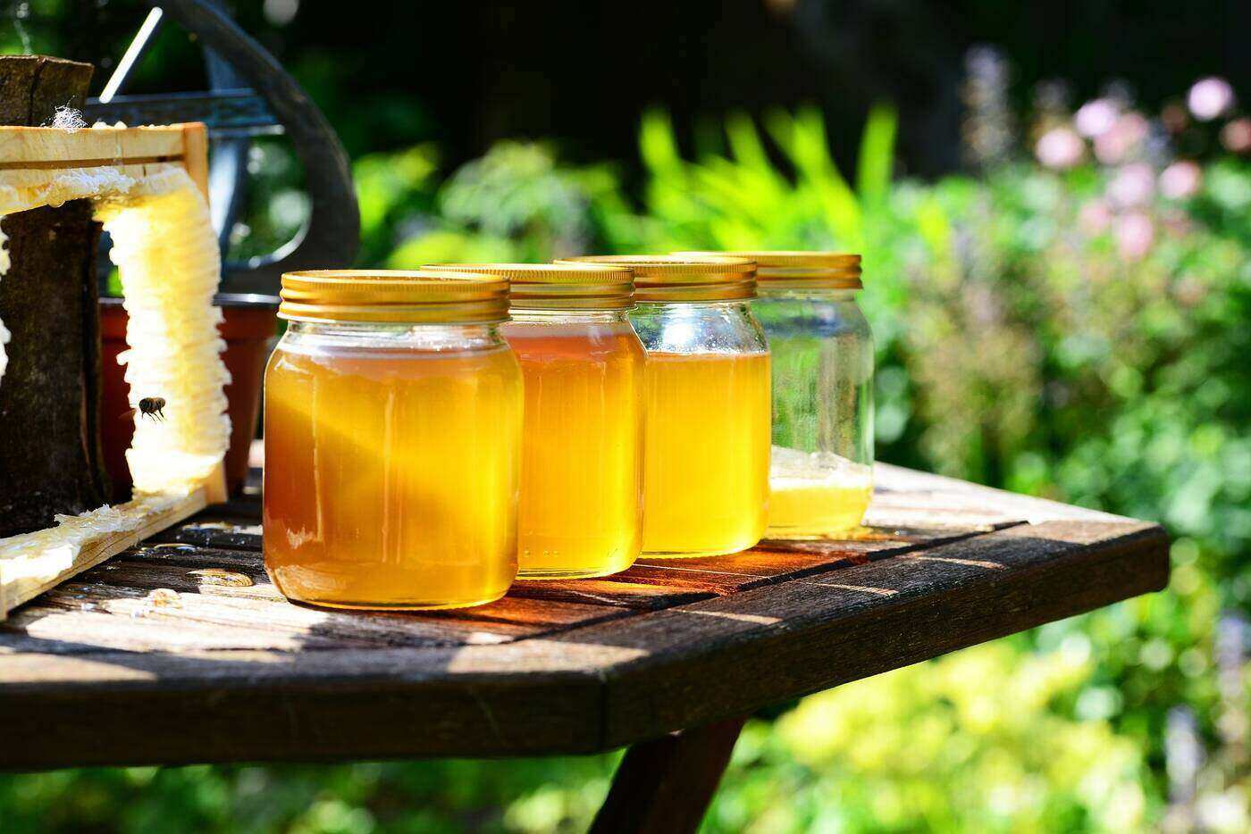 Home.fit honey-jars-video-review An exploration of sustainable beekeeping [video review]