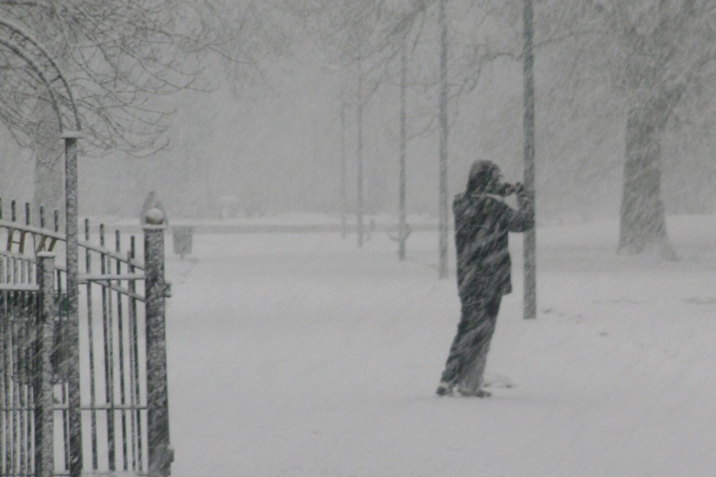 Home.fit poems-reif-blizzard-snow First Vaccine, The Snow You Can't See and 4 Other Poems